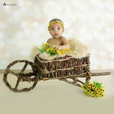 Carrinho-de-Cipo-para-Cenario-Fotografico-Newborn