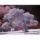 Filtro-Infrared-IR-760NM--Infravermelho--58mm